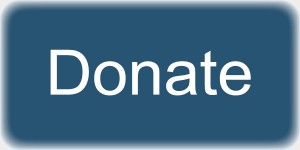 Web_ButtonDonate